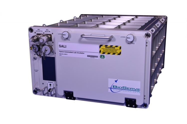 SALI Incubator
