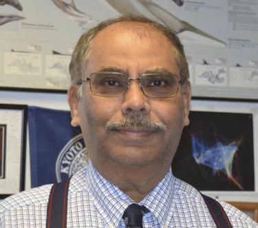 Lakshmi Kantha