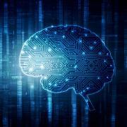 Rendering of a brain