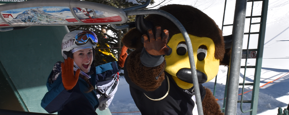 Chip in a chairlift