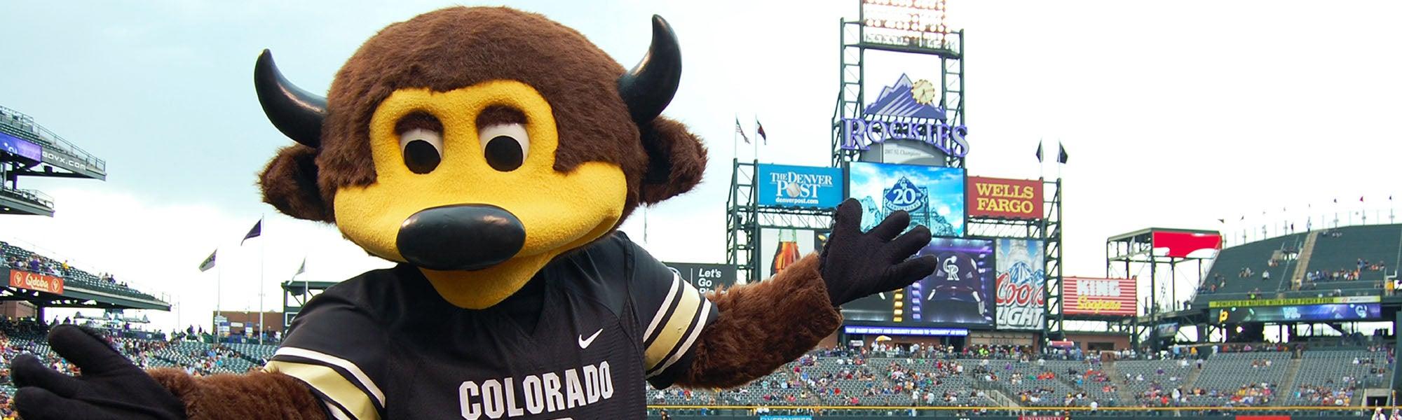 Chip CU Boulder Mascot at CU Boulder night at the Rockies