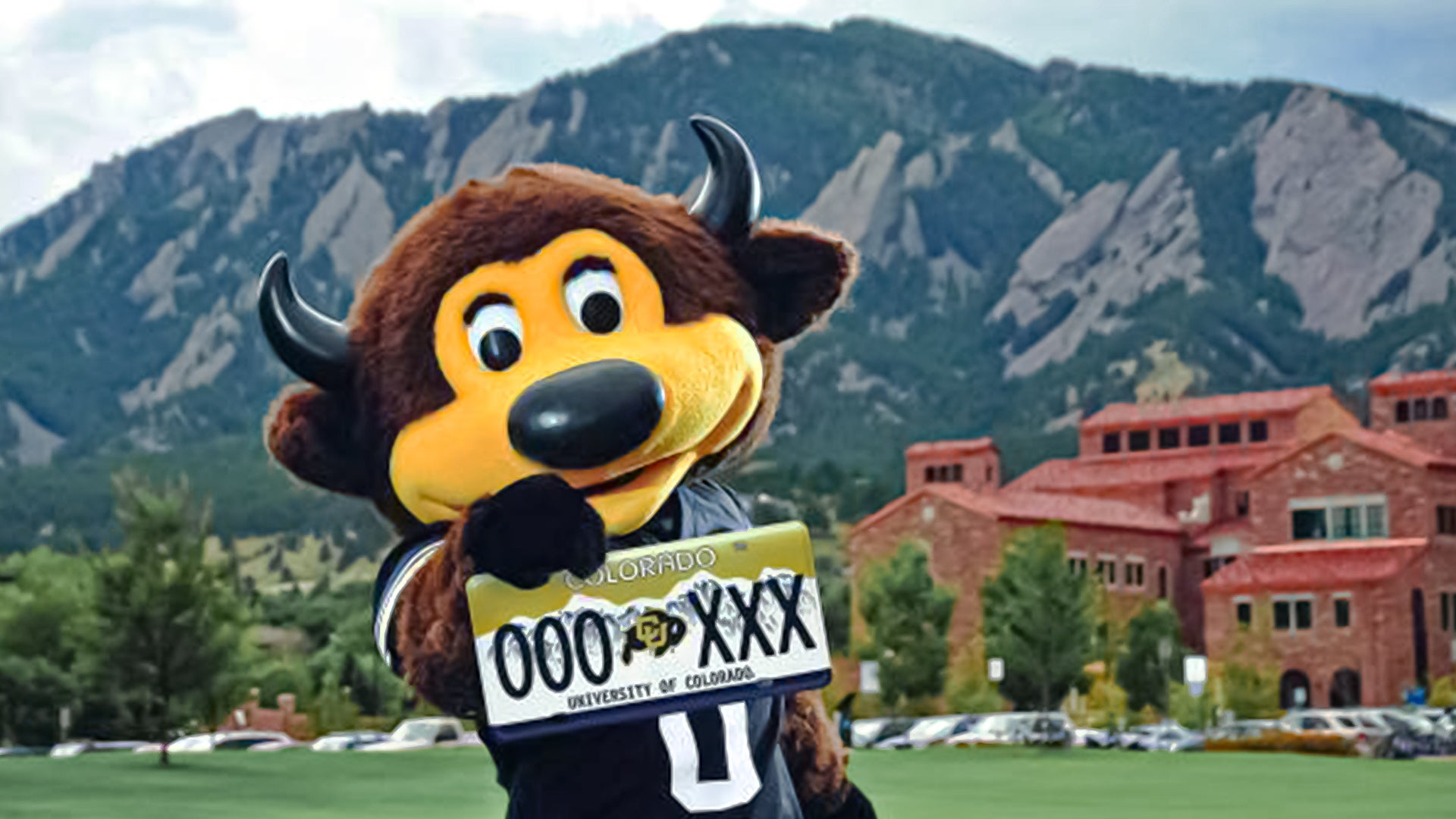 CU Boulder mascot Chip holding up a University of Colorado license plate