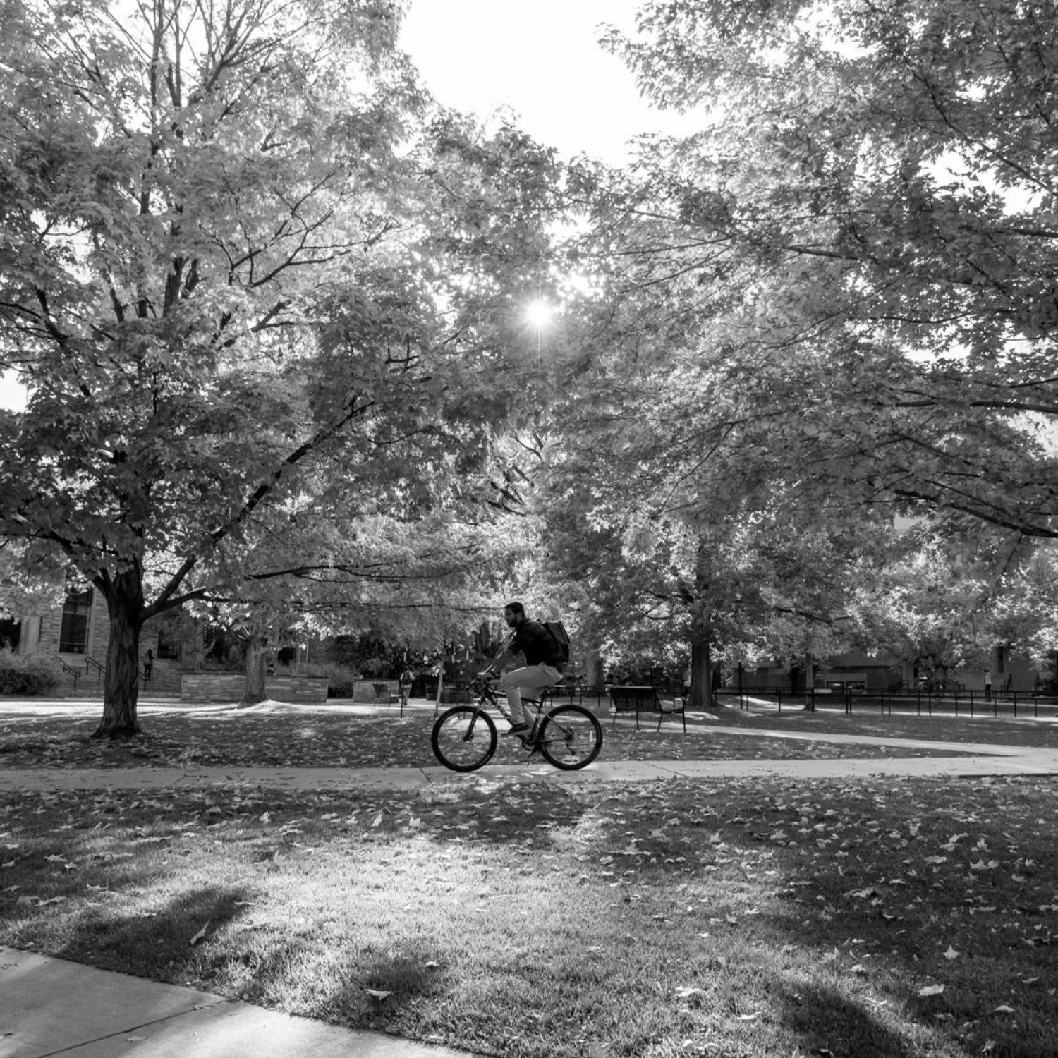 Student on a bike on campus