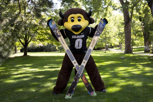 Forever Buffs Skis
