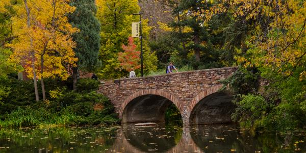 CU alumni bridge