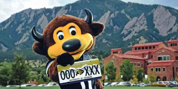 Chip holding a CU Boulder license plate
