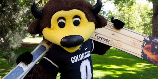 CU Boulder mascot Chip with custom Ralphie skis