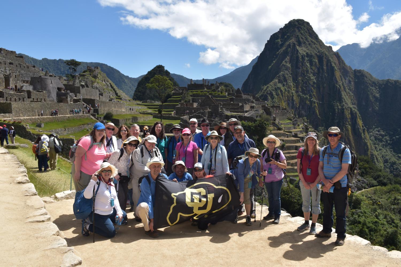 Roaming Buffs at Machu Picchu, Peru