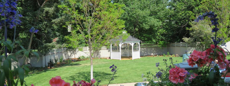 Koenig backyard