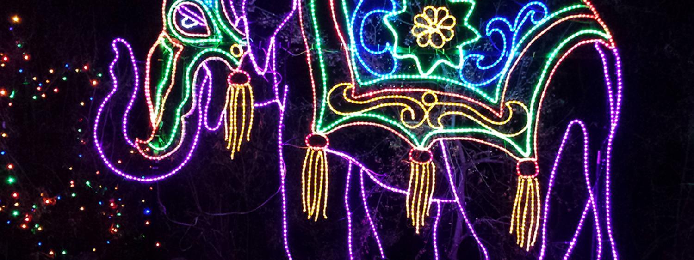 Zoo Lights elephant