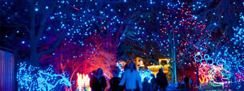 Zoo Lights walkway