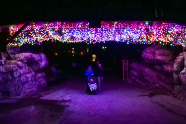 Zoo Lights light bridge