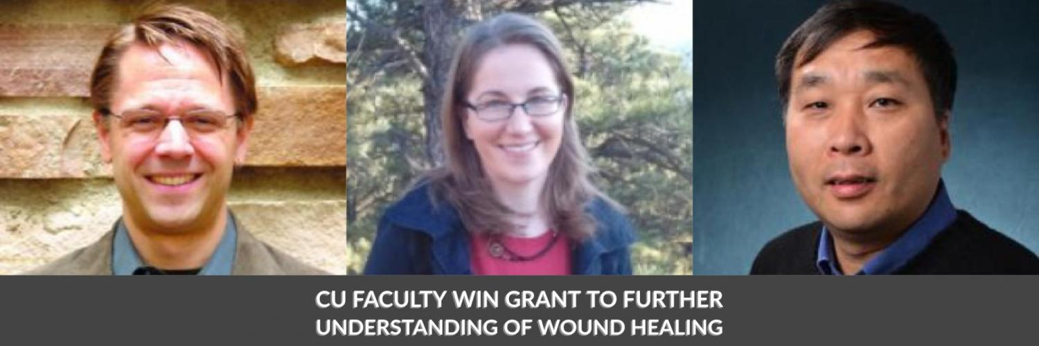 CU Faculty Win Grant to Further Understanding of Wound Healing