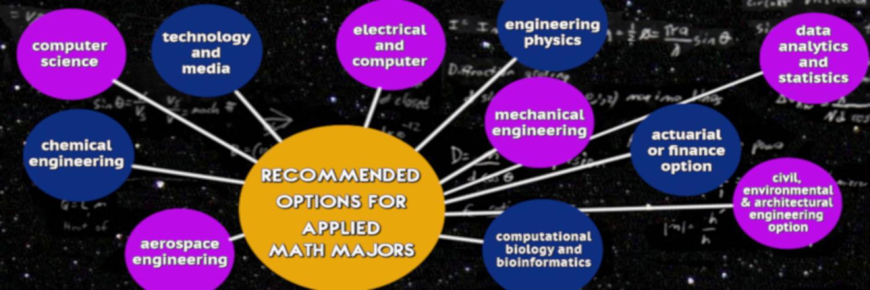 Undergraduate Options