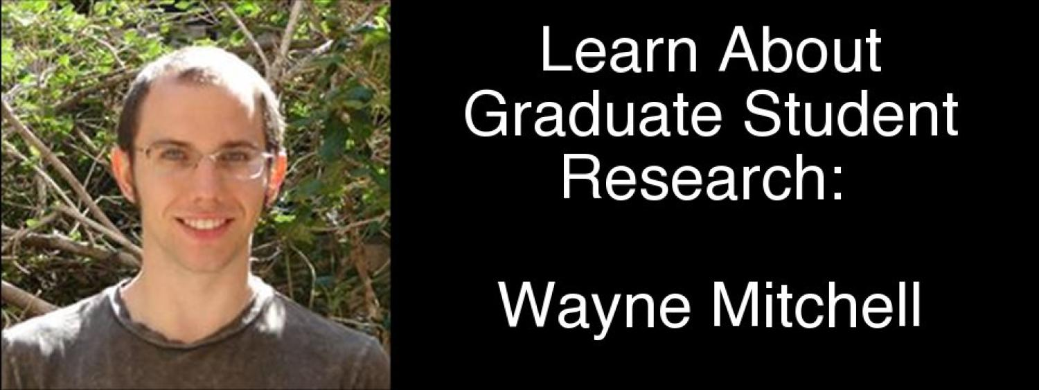 Wayne Mitchell's Research