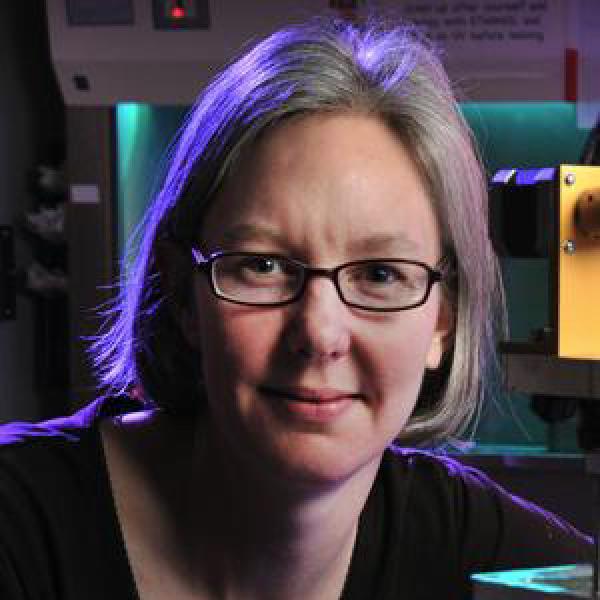 Professor Stephanie Bryant