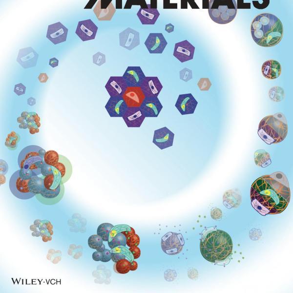 Front Cover: A.S. Caldwell et al., Adv Fun Mat, 30 (37), 2020