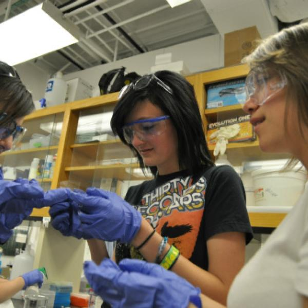 Science discovery students making hydrogels in the Anseth lab