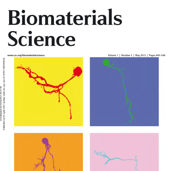 """Front Cover: D.D. McKinnon, A.M Kloxin, and K.S. Anseth, """"Synthetic hydrogel platform for three-dimensional culture of embryonic stem cell-derived motor neurons,"""" Biomaterials Science, 1 (5), 460-469 (2013)."""