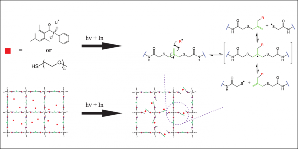 Light-triggered radical network degradation
