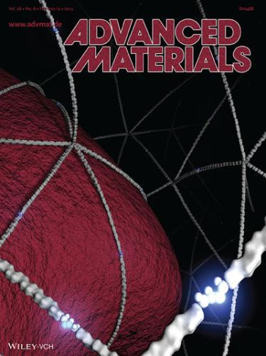 Front Cover Advanced Materials 2014