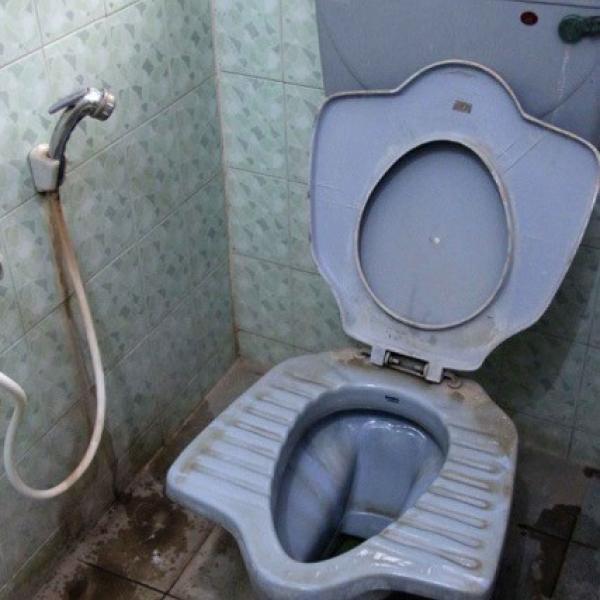 McGilvray toilet