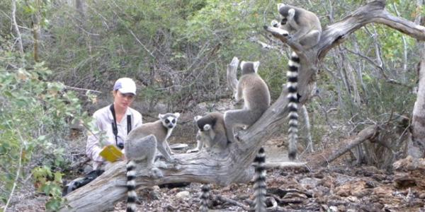 Graduate Student Marni with lemurs