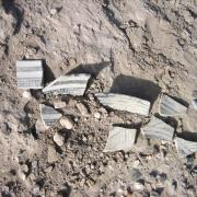 Artifacts found in dig