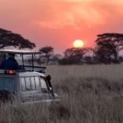 Jeep riding off into the African Sunset