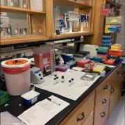Graduate Students Lab