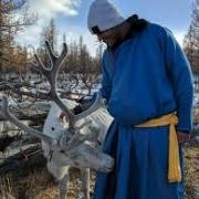 William Taylor with Reindeer