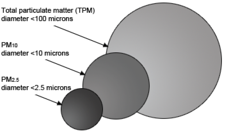PM size diagram