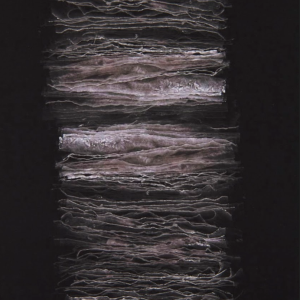 "Emily Irvin. ""Lamellar,"" scanned image. 72""x9"". 2019"