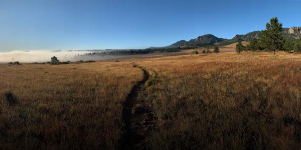 Walking through a field in bouldert trail