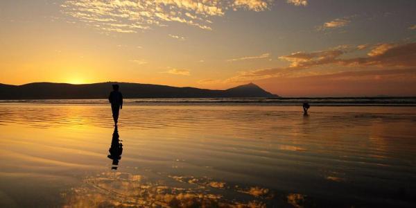 Human walking in water at sunset.