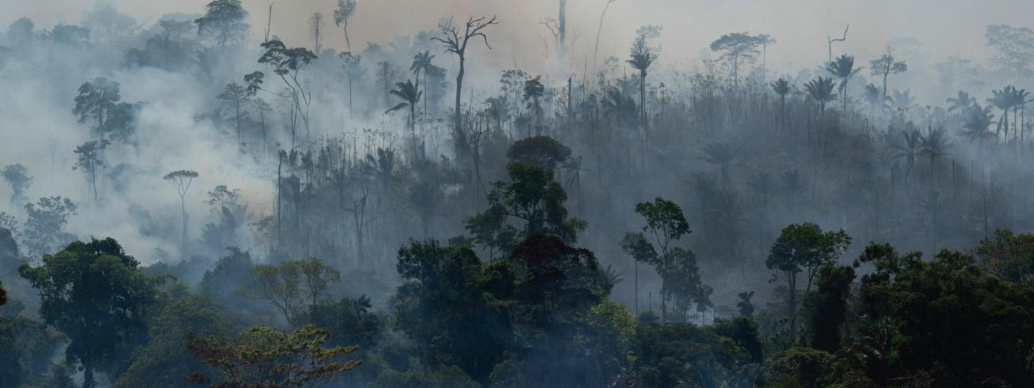 Fire consumes the Amazon rainforest in Altamira, Brazil, on Tuesday, Aug. 27, 2019.