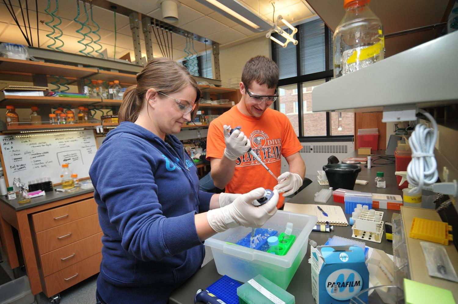 two researchers in lab