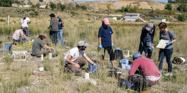 Students on an archaeological dig in a green, hilly grassland.