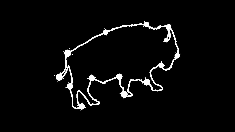 Buffalo star outline