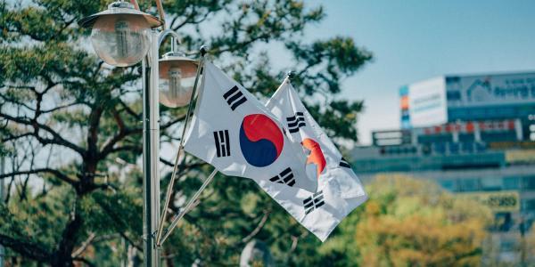 Korean flags