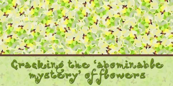 Cartoon of many flowers