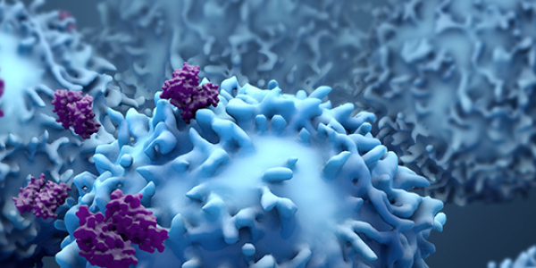 Proteins with T-Cells