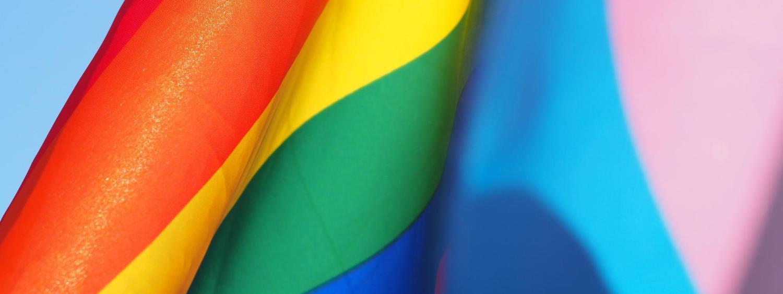 LBBTQ flag and transgender flag