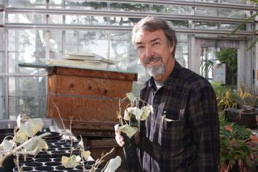 Tom Lemieux, manager of the EBIO greenhouses.