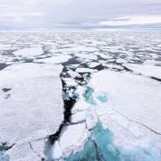 Polar Sea Ice