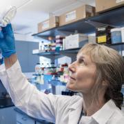Corrie Detweiler in a lab