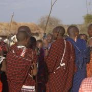 Maasai tribe, anthropology