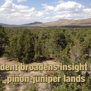 Ariel view of piñon-juniper lands
