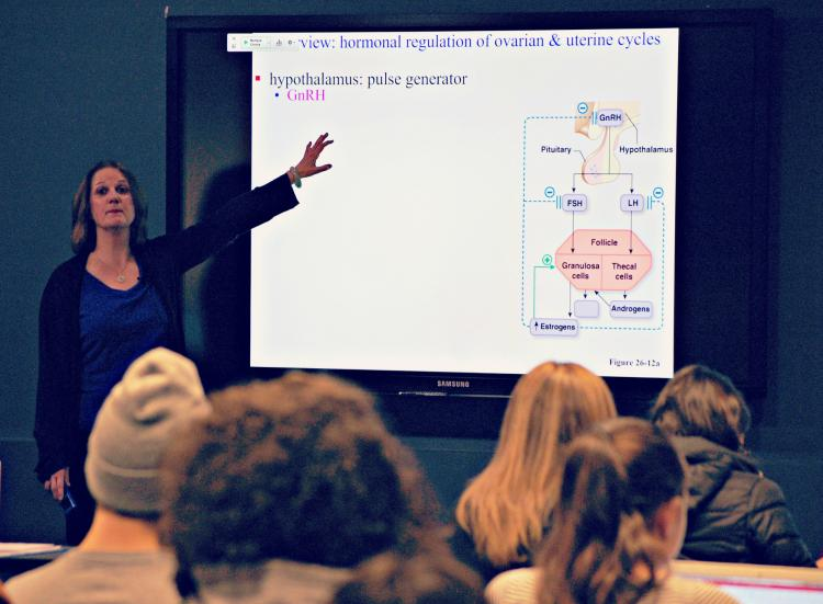 Janet Casagrand lecturing on the human reproductive system to IPHY students.