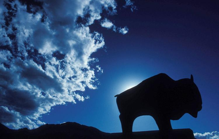 Silhouette of the statue of Ralphie, the CU Boulder mascot